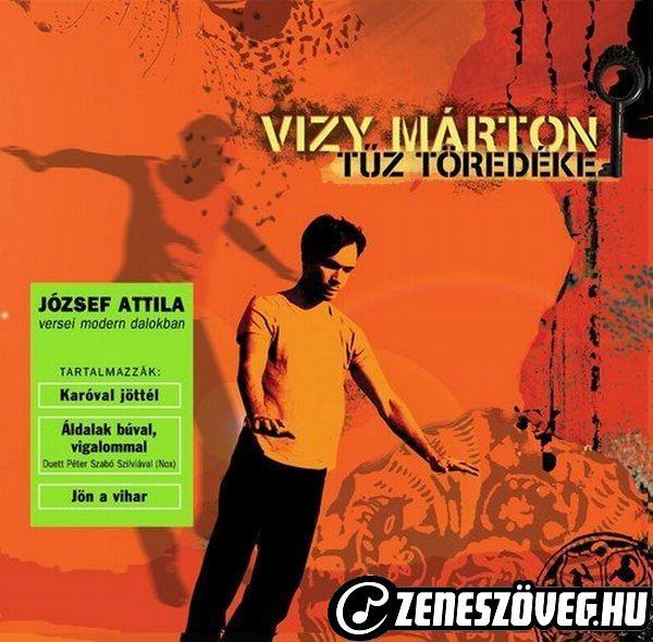 Vizy Márton Tűz töredéke