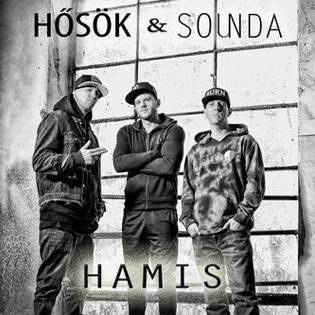 Hősök Hamis (feat. Sounds)