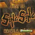 Sing Sing Best of Sing Sing