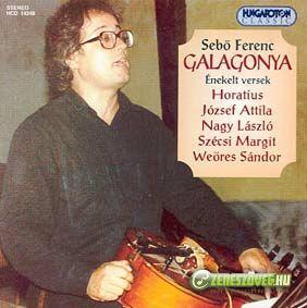 Sebő Ferenc Galagonya