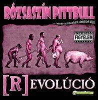 Rózsaszín Pittbull (R)evolúció