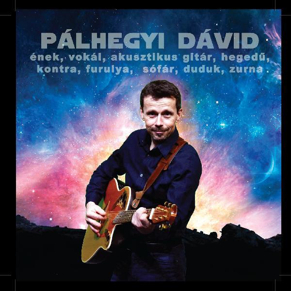Pálhegyi Dávid