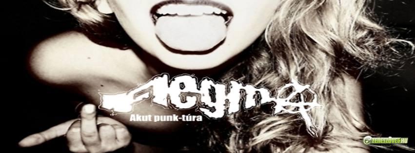 FlegmA Akut punk-túra
