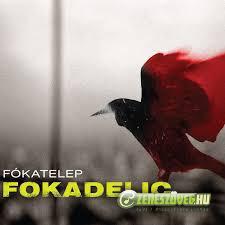 Fókatelep Focadelic