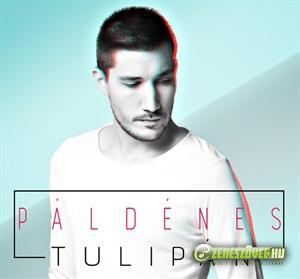 Pál Dénes Tulipán