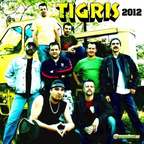 Tigris 2012 Maxi