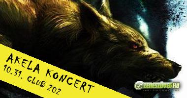 Zeneszöveg-dalszöveg-akela-koncert-club202-2012-zeneszöveg.hu-ahol a dalszövegek laknak