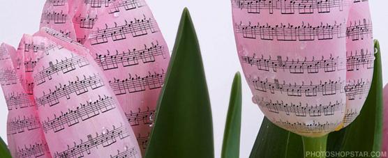 Zeneszöveg-dalszöveg-tavasz-2013-zeneszöveg.hu-ahol a dalszövegek laknak
